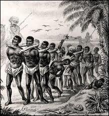Si votre fortune a été amassée grâce à la traite des esclaves c'est qu'un de vos ancêtres était négrier. Quelle sorte de commerce pratiquait-il ?