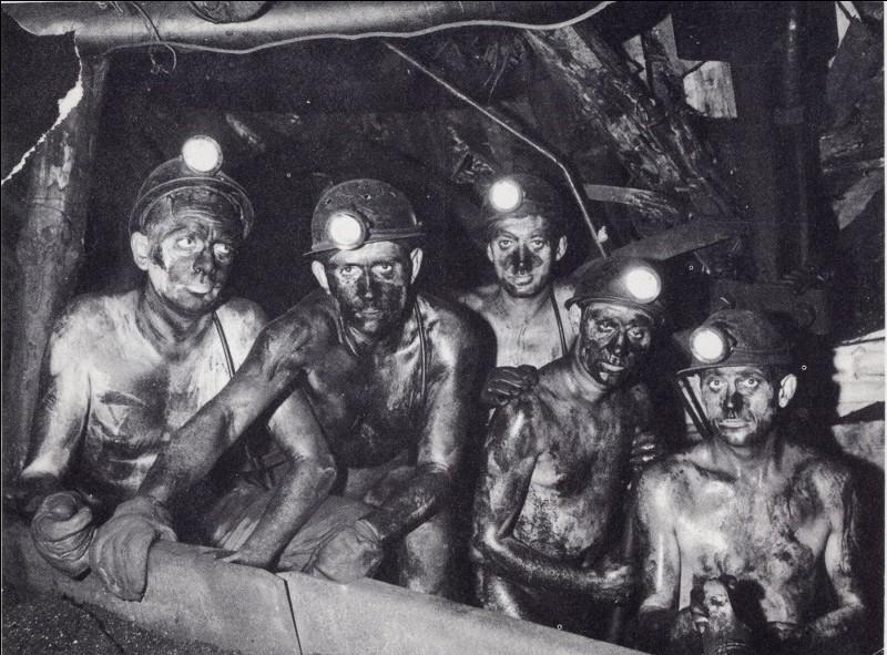 Heureusement, une branche de votre famille au sens moral plus développé, a investi dans les mines de charbon du nord de la France. Dans quel roman d'Émile Zola est-il question des mineurs ?