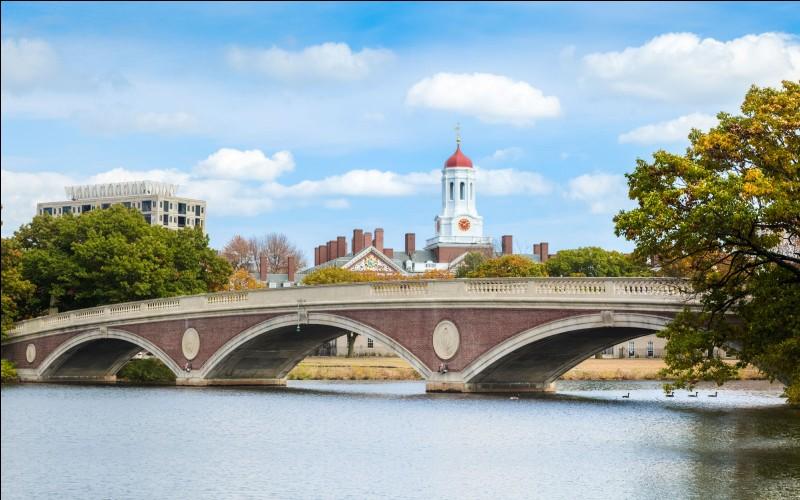 Quelle université occupe la première place du classement mondial établi par le Times Higher Education ?
