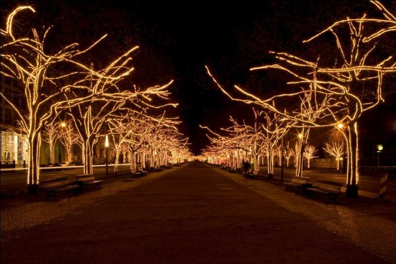 On voit un boulevard de la capitale, bordé d'arbres illuminés : ces arbres qui bordent les allées, sont ornés de petites lumières. Il y a les marchés : sur l'une des plus belles places, la Konzerthaus, les cathédrales françaises et allemandes revêtent des habits de lumière traditionnels et donnent vie à la vieille ville de Spandau. Ailleurs, l'esprit de Noël s'incarne dans une crèche vivante.