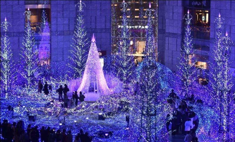 On est hâtif pour se mettre dans l'atmosphère de Noël : à peine l'Halloween a-t-il pris fin que le temps des fêtes prend sa place, le 1er novembre. Prenez pour acquis que l'une des choses qui vous rappellera le plus votre Noël nippon, c'est que les Japonais sont très forts avec leurs illuminations.En soirée il est agréable de faire un tour dans l'un des marchés de Noël, la capitale a du choix.
