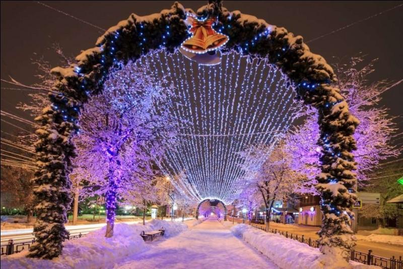 La Grosse Pomme accueille l'un des plus célèbres sapins : le sapin de Rockefeller, installé depuis 1931 dans le fameux Rockefeller center. Vous préférez la chasse aux vitrines ? Voyez Macy's sur Broadway, Saks sur la Fifth, Bloomingdale's.Sur notre photo, un sentier décoré de 6 km, une enfilade d'arbres de Noël qui se dressent en face de chaque bloc d'immeubles et s'illuminent la nuit.