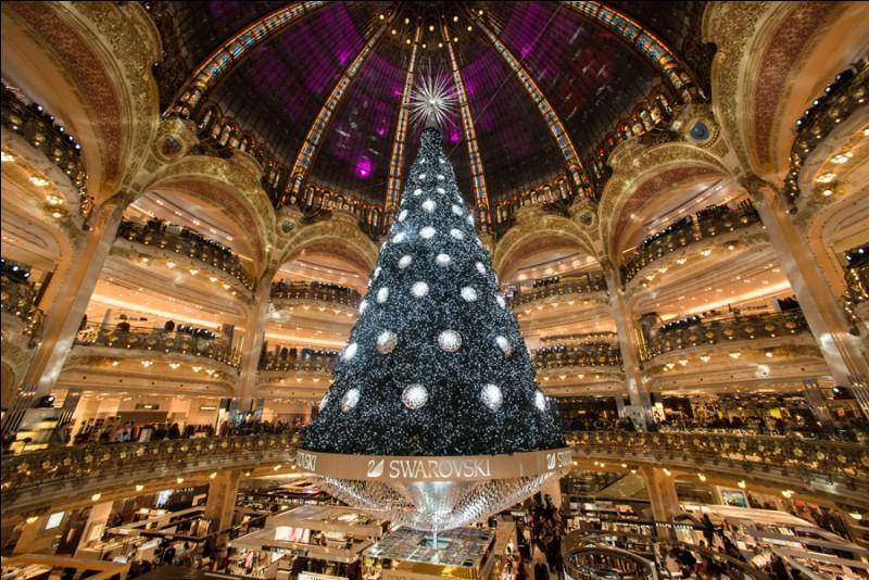 Il y a un temps de l'année où son nom de ville-lumière revêt un autre aspect : si vous voulez être saisi de cette magie, partez de l'Arc de Triomphe et descendez l'avenue des Champs-Elysées pour profiter des merveilleux décors des platanes et des vitrines.Plus bas, au niveau de la place de la Concorde, la Grande Roue : du haut de ses 65 m, vous aurez une vue imprenable sur une ville incomparable.