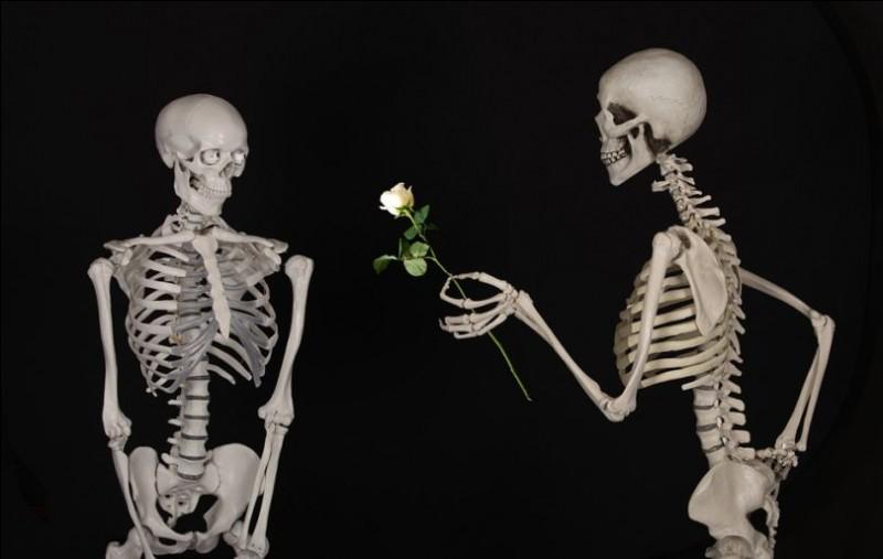 Quel os de l'oreille est le plus petit os du corps humain ?