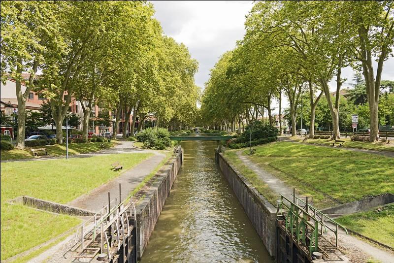 """Le pluriel du mot """"canal"""" est..."""