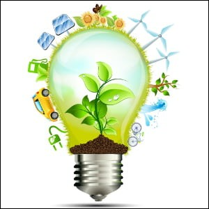 Pour toi, l'écologie c'est...