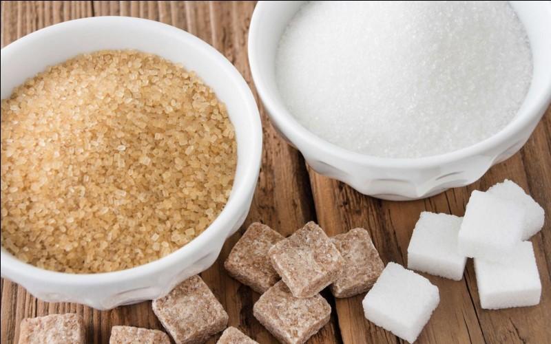 Quel nom donne-t-on au sucre contenu dans les fruits ?