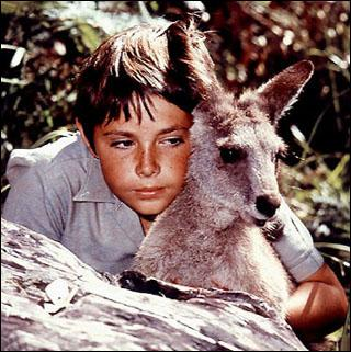 Comment s'appelle le meilleur ami de Skippy le kangourou ?