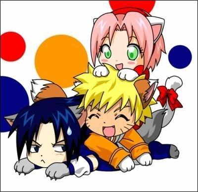 Qui sont ces ninjas représentés sous la forme de chats?