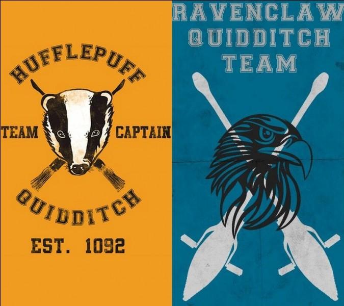 Qui sont les attrapeurs de quidditch de Poufsouffle et Serdaigle ?