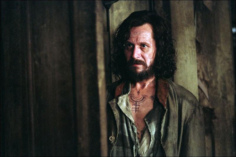 Combien de personnes Sirius Black aurait-il tué ?