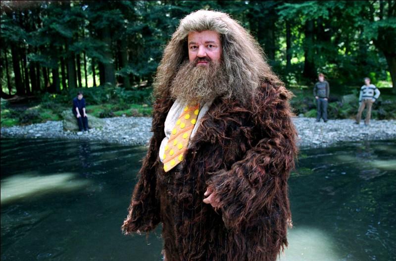 À quelle date Hagrid doit-il se rendre au Ministère de la Magie pour faire face à la Commission d'examen des créatures dangereuses qui décidera du sort de Buck ? Et d'ailleurs, par quel moyen s'y rend-il ?