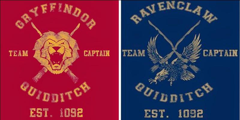 Qui sont les Serpentard qui se déguisent en Détraqueurs pendant le match Serdaigle/Gryffondor ?