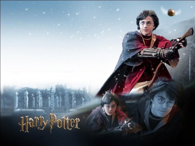 Quel poste occupe Harry dans l'équipe de quidditch de Griffondor ?