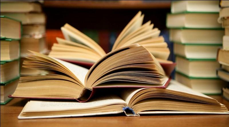 """Aimes-tu les livres ? Quand je dis """"livres"""", c'est livres, mangas, BD, etc."""