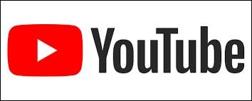 Si tu devais choisir un youtubeur...