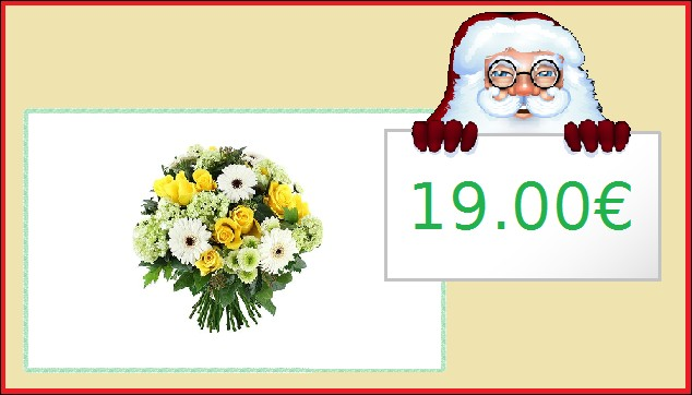 Un beau bouquet de fleurs : 19.00€