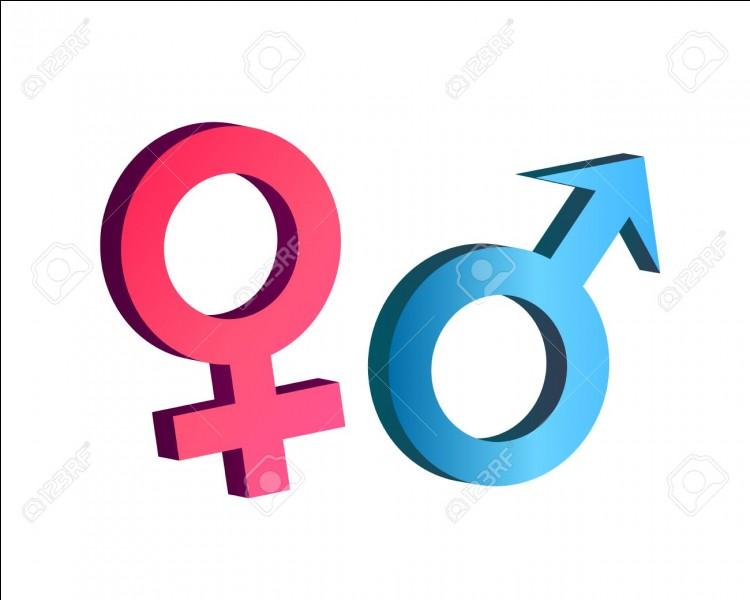 La question de base : es-tu une femme ou un homme ?