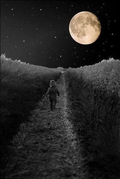 """Le groupe """"Téléphone"""" chantait """"Je rêvais d'un autre monde où la lune serait...."""""""