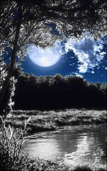 Dans le titre d'un film de Robert Lamoureux, qui était au clair de lune ?