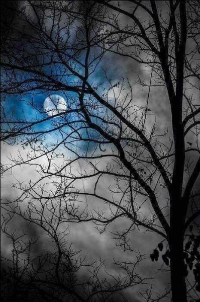 """Qui a écrit le roman """"Le Coup de lune"""" ?"""