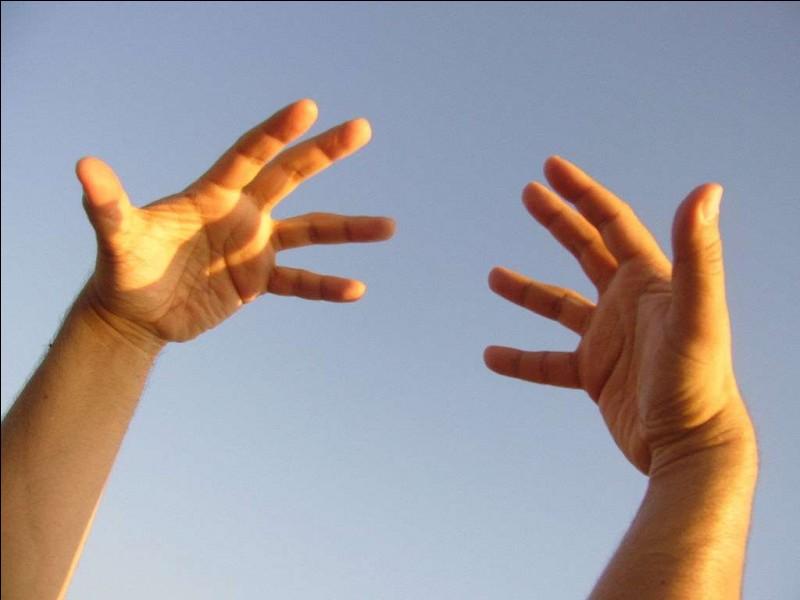 Comment se nomme le troisième doigt de la main ?
