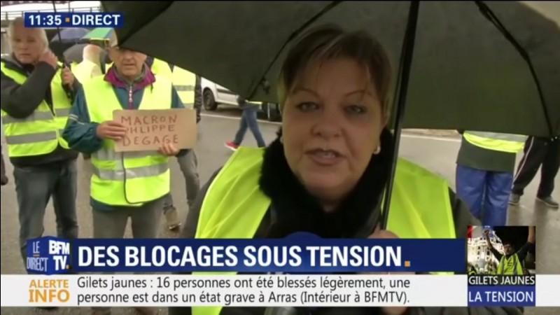 De quelle couleur sont les gilets arborés par ces manifestants français durant l'hiver 2018 ?