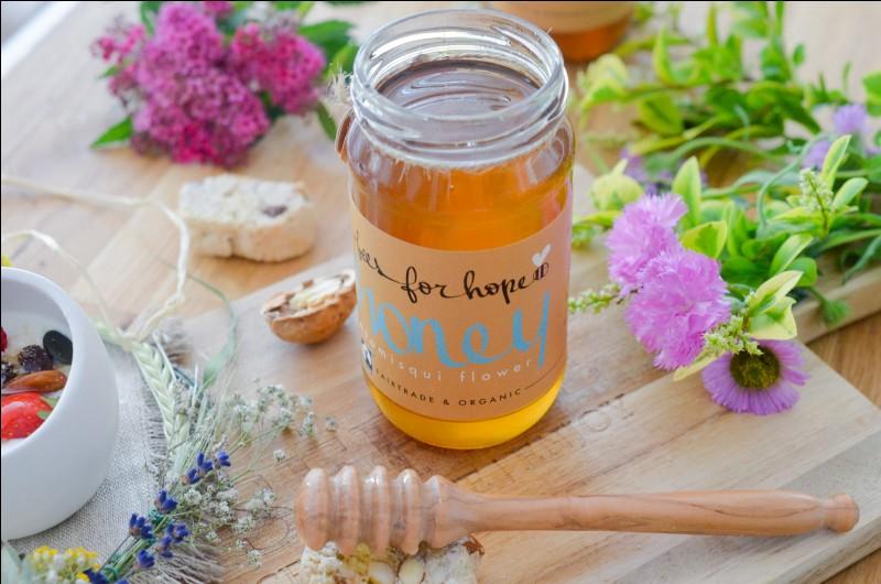 """Le miel est appelé """"nectar des dieux"""" car il aide a cicatriser les plaies plus vite."""