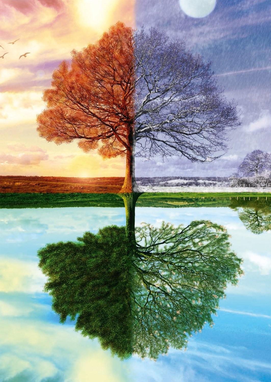 Quelle saison te correspond le mieux ?