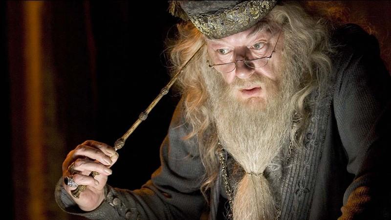 Quel est le nom du directeur de ce pensionnat pour jeunes sorciers et sorcières ?