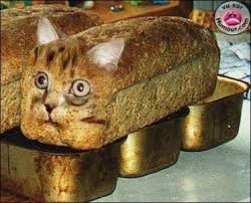Histoire : À quel peuple attribue-t-on généralement l'invention du pain au levain ?