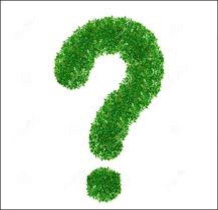 Nature : La chicorée pain de sucre est une plante herbacée vivace de la famille des Astéracées. Consommée généralement en salade, elle doit son nom à ses feuilles supérieures qui sont serrées comme un pain de sucre. De ces trois salades en photos ci-dessous, où se situe-t-elle ?