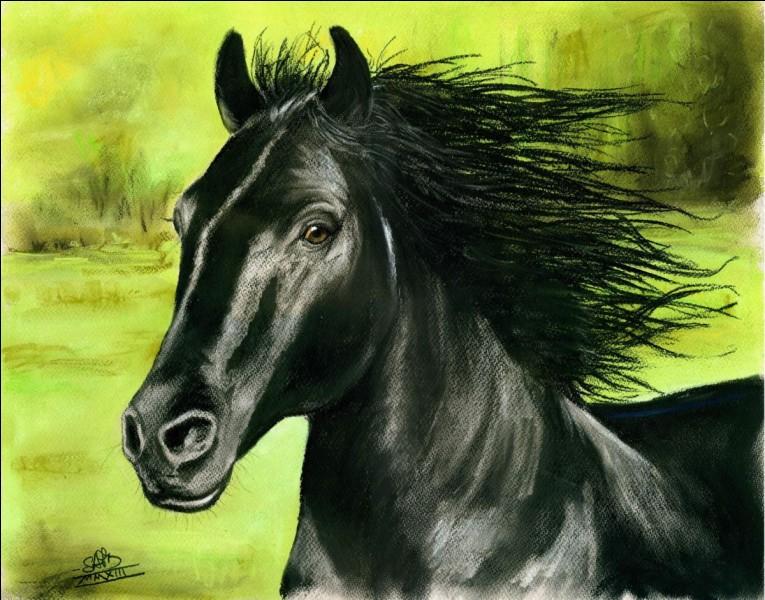 Quel est le nom populaire que l'on donnait aux chevaux de guerre du Moyen-Âge ?
