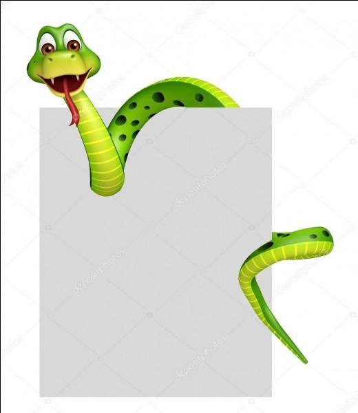 L'oxymore est un petit serpent d'Amérique centrale.