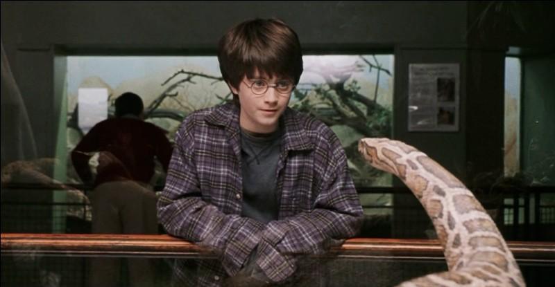 Dans ''Harry Potter à l'école des sorciers'' au zoo d'où vient le serpent avec qui parle Harry ?