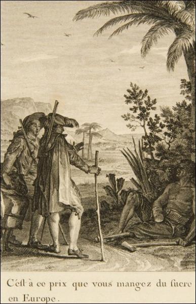 Quelle est la devise de Pangloss, précepteur de Candide ?