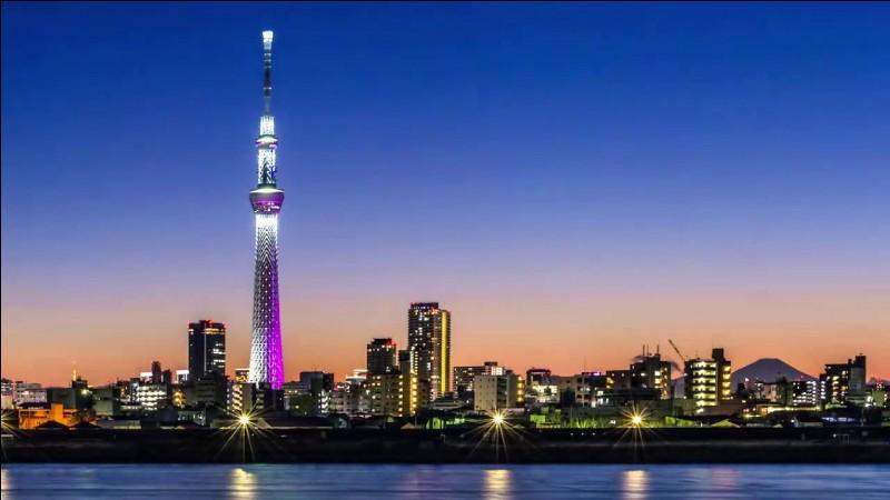 Quelle est la taille du Tokyo Skytree ?