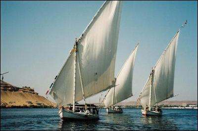 Quels petits voiliers légers et étroits à rames naviguent sur le Nil ?