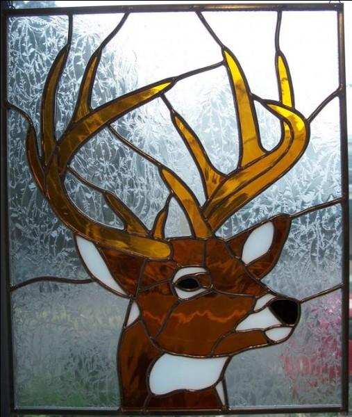 Quel est le nom de la maison (ou plutôt de l'abri) du cerf au Quebec ?