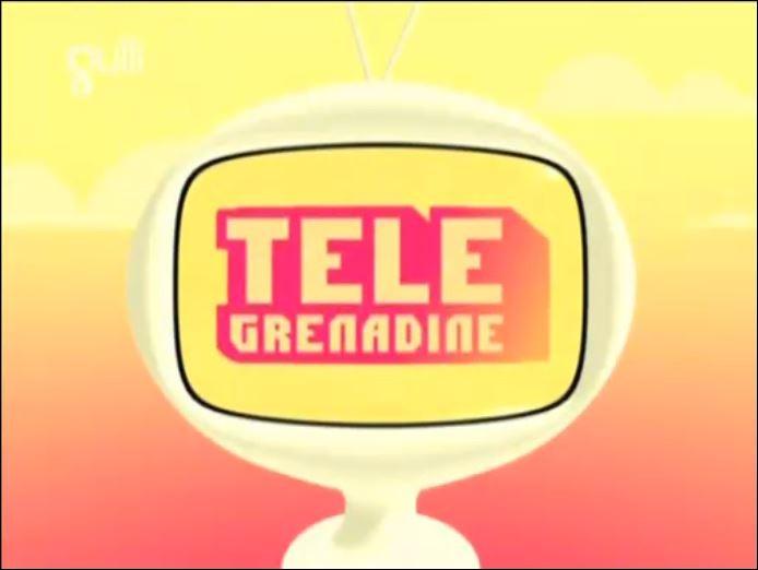 """Quel était le principe du bloc """"Télé Grenadine"""" ?"""