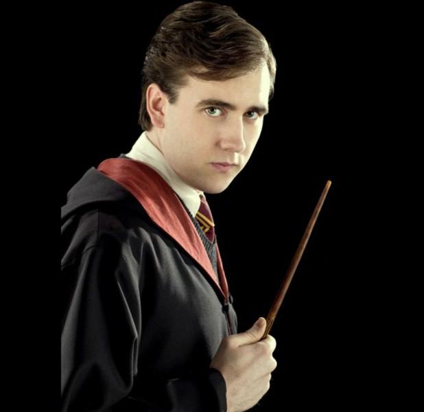 Pourquoi Neville Londubat déteste-t-il Bellatrix Lestrange ?