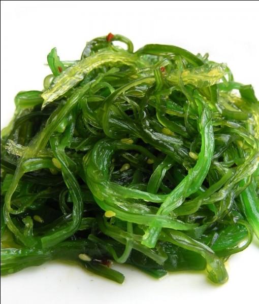Beaucoup d'algues sont comestibles et cultivées par l'homme, ce pays est le premier producteur mondial de ces algues, si vous ne le trouvez pas, vous allez rire jaune !