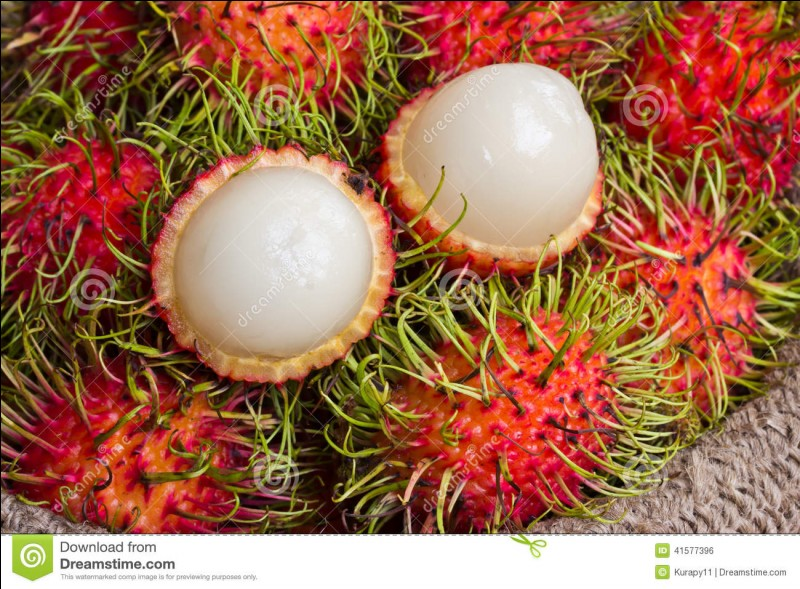 Ce fruit est à présent cultivé dans de nombreux pays chauds, mais au départ on le trouvait ...