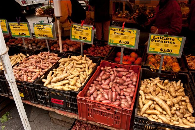 Ce tubercule a fait le tour du monde,la France et la Belgique, en particulier, en ont fait un monument de leur gastronomie, mais au départ, d'où pensez-vous qu'il vienne ?
