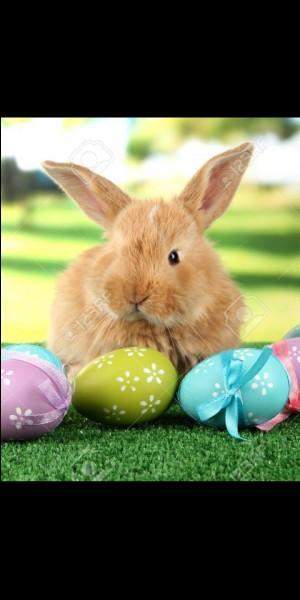 Croyez-vous aux lapins de Pâques ?