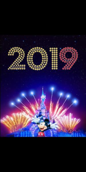 Regardez-vous tous les soirs de Nouvel An les feux d'artifice ?