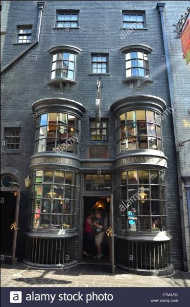 Tu es chez Ollivander, tu veux acheter ta première baguette mais c'est la baguette qui choisit le sorcier, non ?Quelle baguette magique pourrait te choisir ?