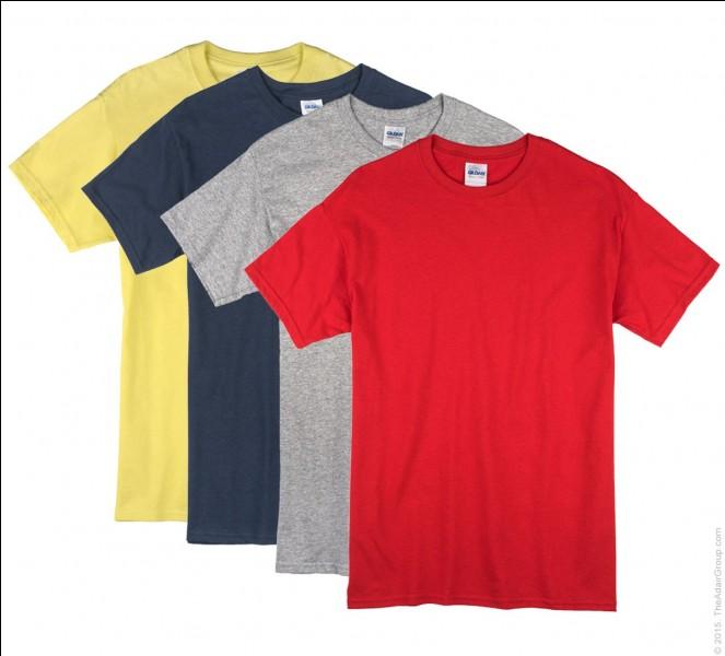 Quelle est la couleur des T-shirts des résidents qui suivent le programme d'entraînement initial ou qui vont bientôt y participer ?