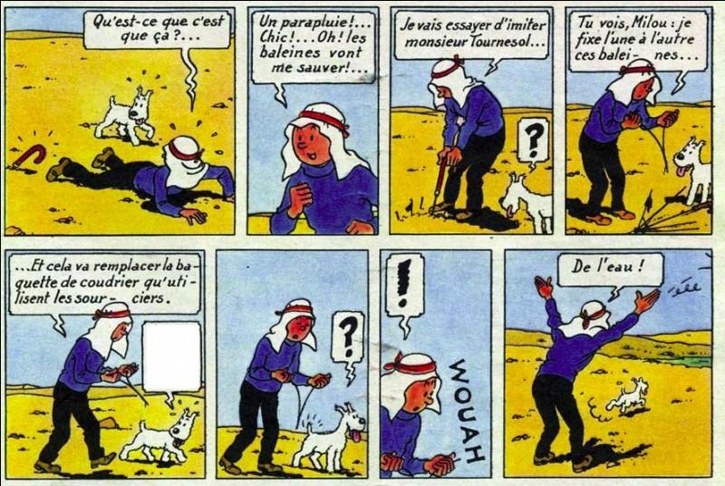 C'est encore un commentaire avisé de Milou que l'on cherche, dans « Tintin au pays de l'or noir ». Lequel est le bon ?