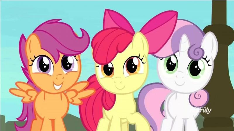 Quelle sorte de poney préféreriez-vous être ?